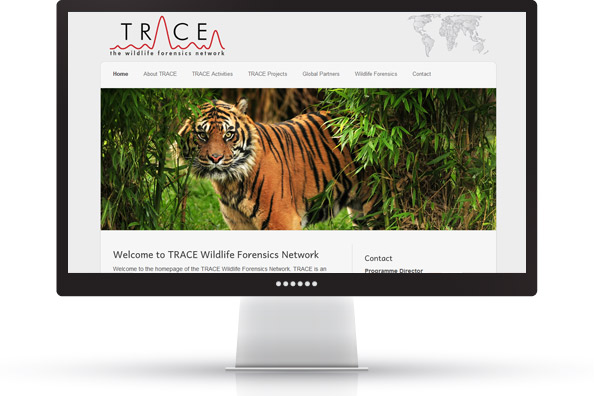 desktop-trace